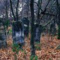 Cmentarz Żydowski, Karczew